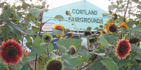 Cortland Fairgrounds