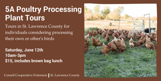 banner for poultry processing tours