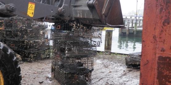 der lobster trap rem 7