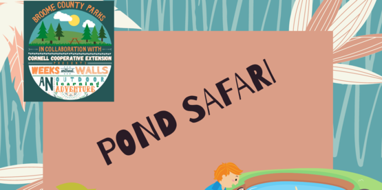 pond safari