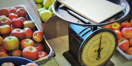 kitchen scale surrounded by different kinds of apples