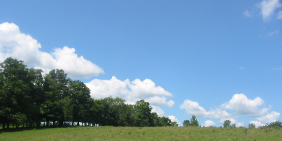 Farm scenery, Dryden NY