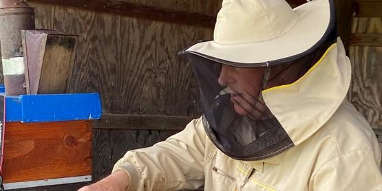 Rodney, beekeeper