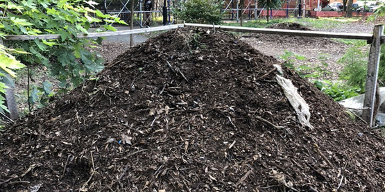 Compost pile in New York City.