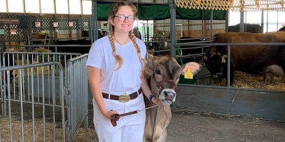 dairy show at fair