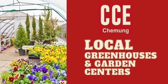 Find local greenhouses & garden centers