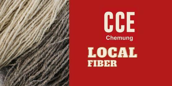Find local fibers