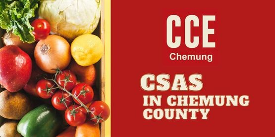 Community Supported Agriculture in Chemung County