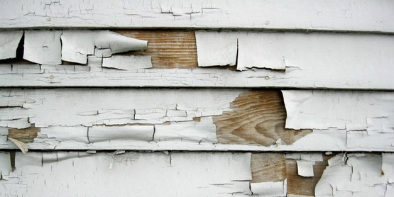 Lead based paint found in older homes creates our greatest exposure to environmental lead.