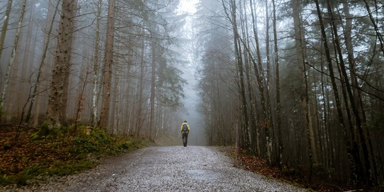 a man walking on a path in the woods
