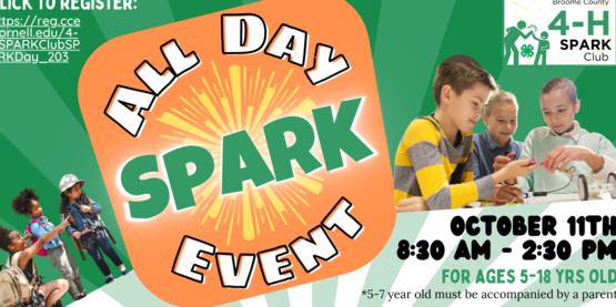 Spark Day