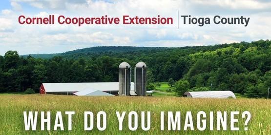 CCE Tioga farm