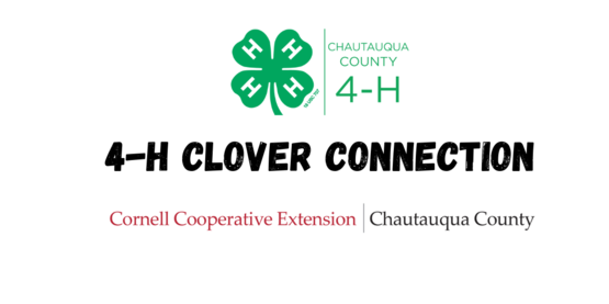 4-H Clover Connection
