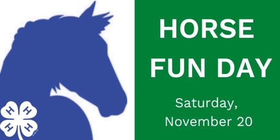 horse fun day