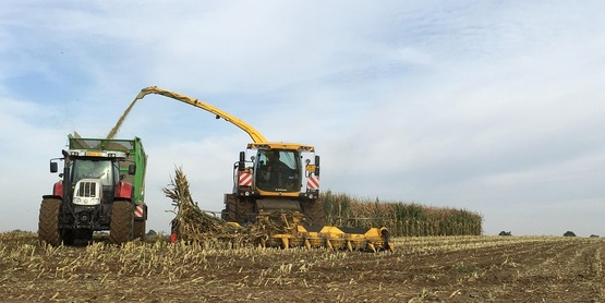 Tractor corn silage