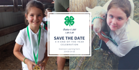 4-H End-of-the-Year Celebration