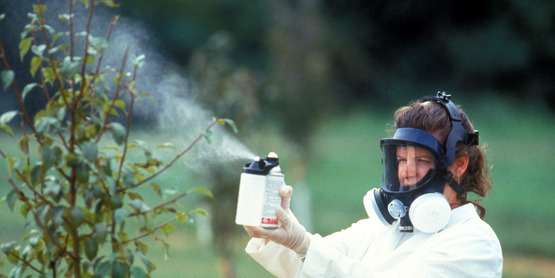 agriculture worker wearing respirator while spraying.