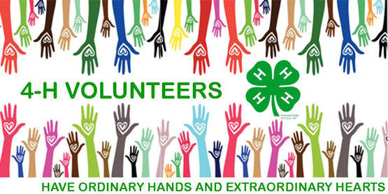 Find out how you can volunteer with 4-H!