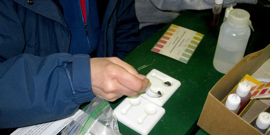 A soil pH test is a great first step to successful gardening.