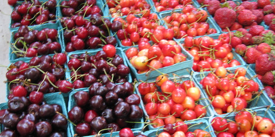 NYS sweet cherries at an NYC farmers' market
