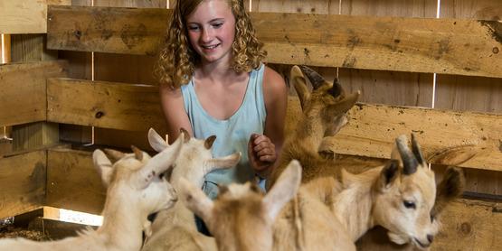 Trudeau Family Farm, Edwards, NY