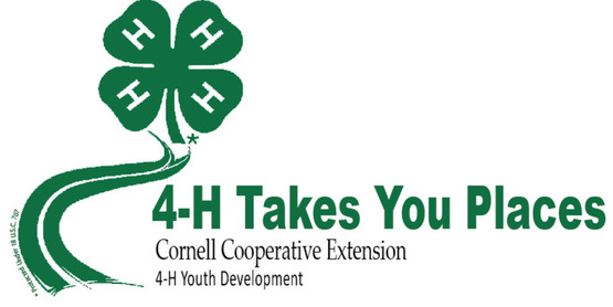 4-H Public Presentations is a program in which youth learn to create a presentation and develop the skills needed to present it before an audience.