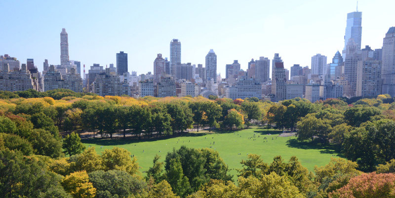 Aerial view of Sheep Meadow.