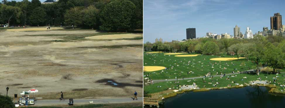The Great Lawn, before and after restoration in 1997.