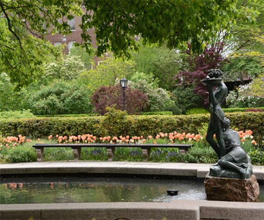 Where to Find Spring Blooms in Central Park - The Official Website ...