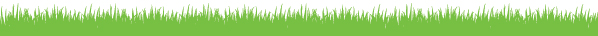The Central Park Conservancy footer image