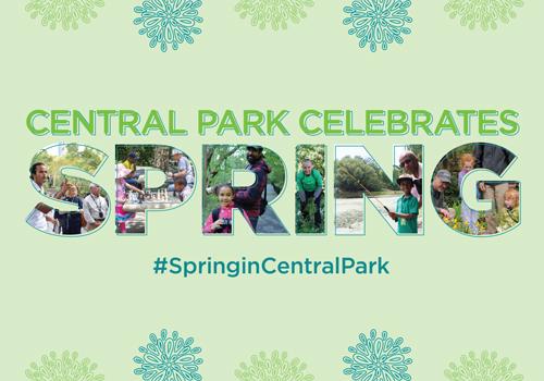 Central Park Celebrates Spring