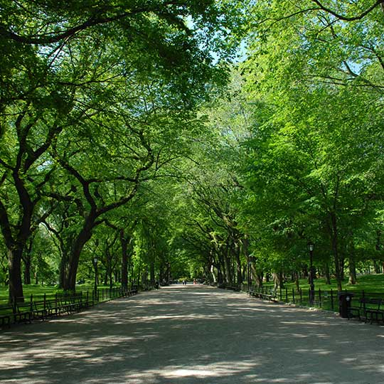 Central Park Nyc: The Official Website Of Central Park NYC