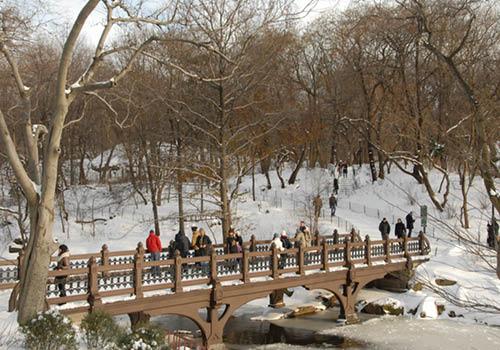 Mid-Park Welcome Central Park Tour