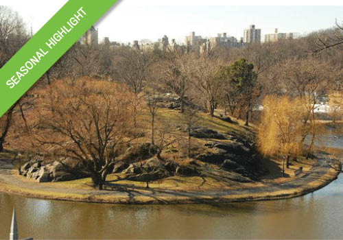 Northern Forts Central Park Tour