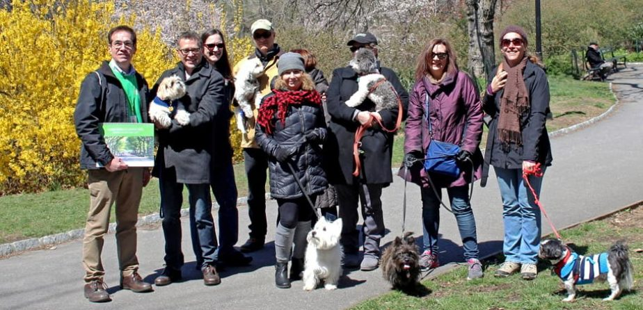 Members bring their dogs to a Hound Hike