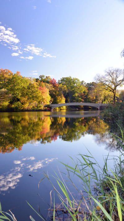 Bow Bridge and reflection
