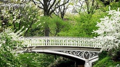 A section of bridge No. 27