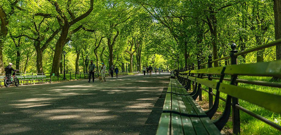 Get Your Virtual Guide to Summer in Central Park