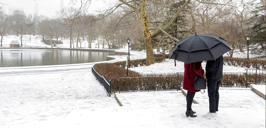 Share Your #CentralParkLove Stories