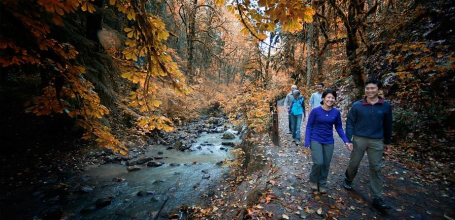Forest Park Conservancy - Forest Park (Portland, OR)