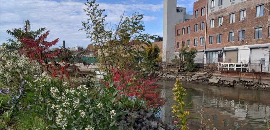 Gowanus Canal Conservancy - Gowanus Lowlands, a network of parks and public spaces centered on the Gowanus Canal (Brooklyn)