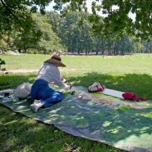 Janet Ruttenberg Captures Central Park