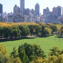 An aerial view of the Sheep Meadow