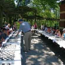 Chess Simul Series