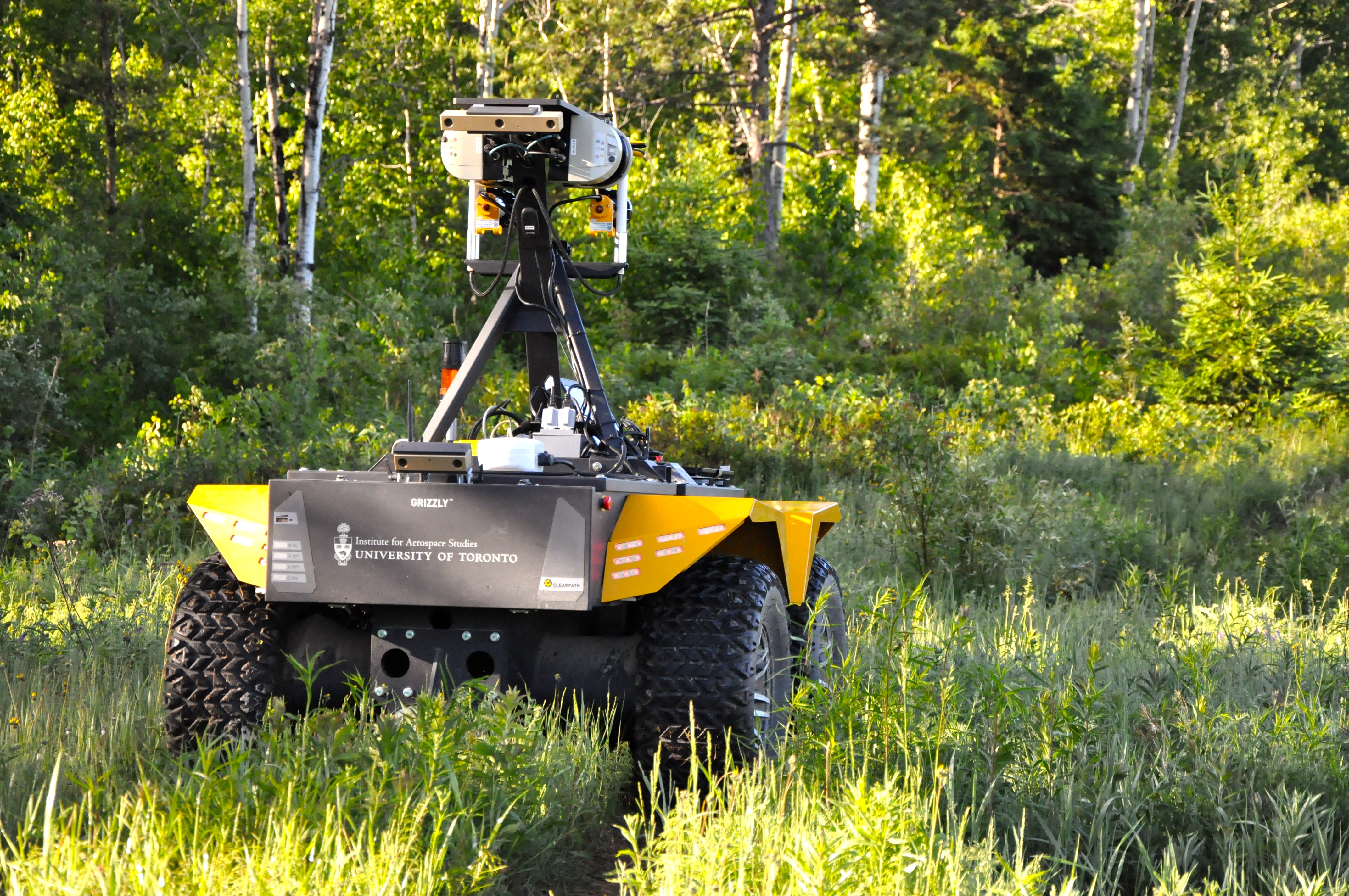 Black Yellow Grizzly Robot with Cameras in grass