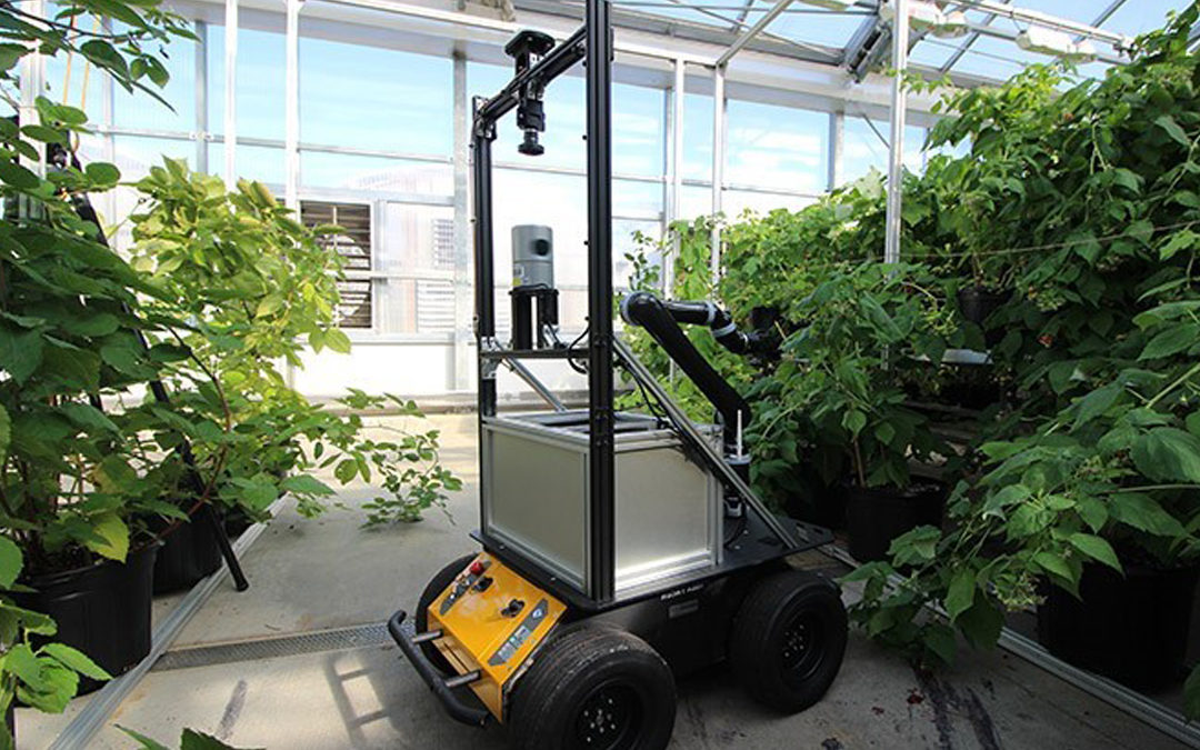 Farming Robot Changes the Future of Plant Pollination