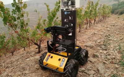 Husky UGV Drives Smart Precision Agriculture for Steep Slope Vineyards