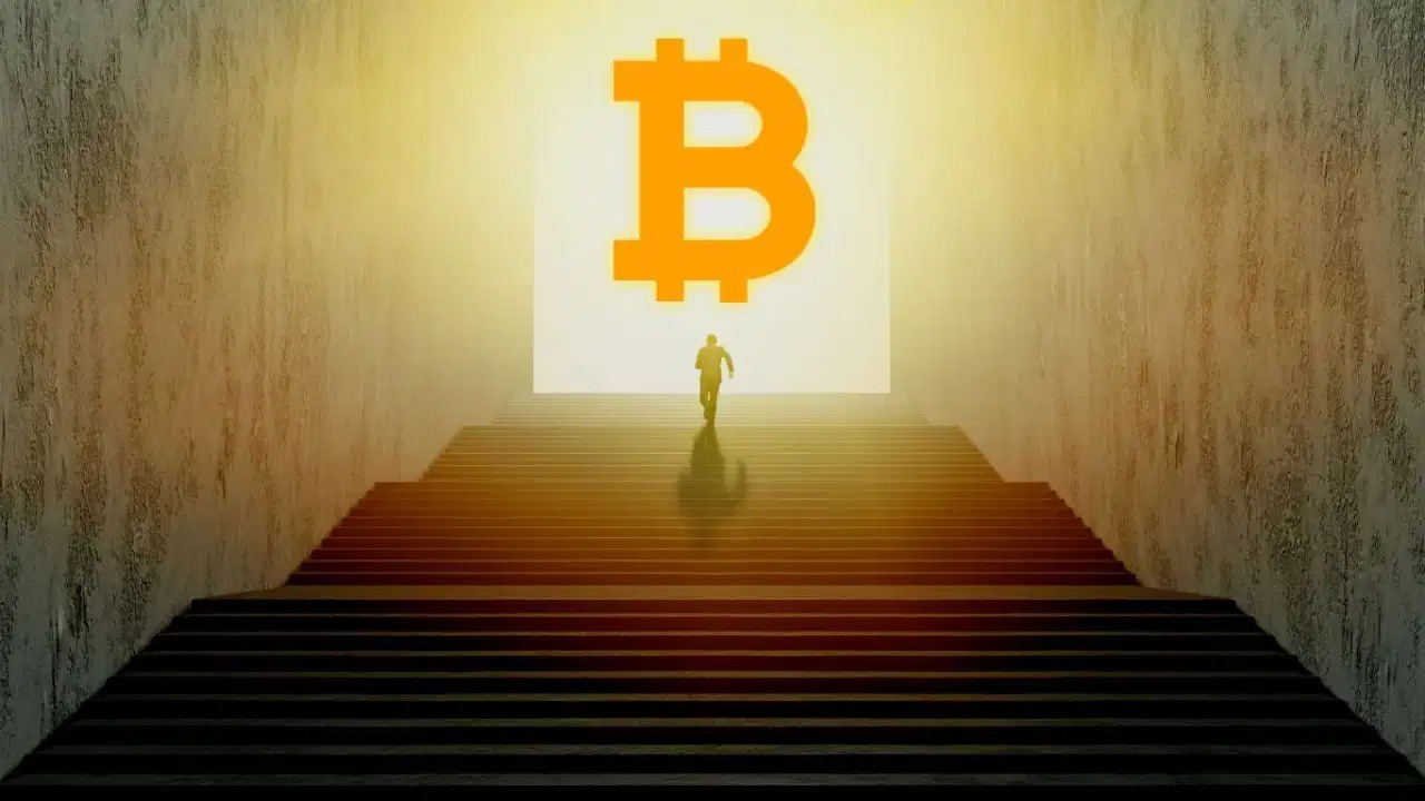 CSO CoinShares: Các Hodler nhìn thấy cơ hội trong sự sụp đổ giá Bitcoin