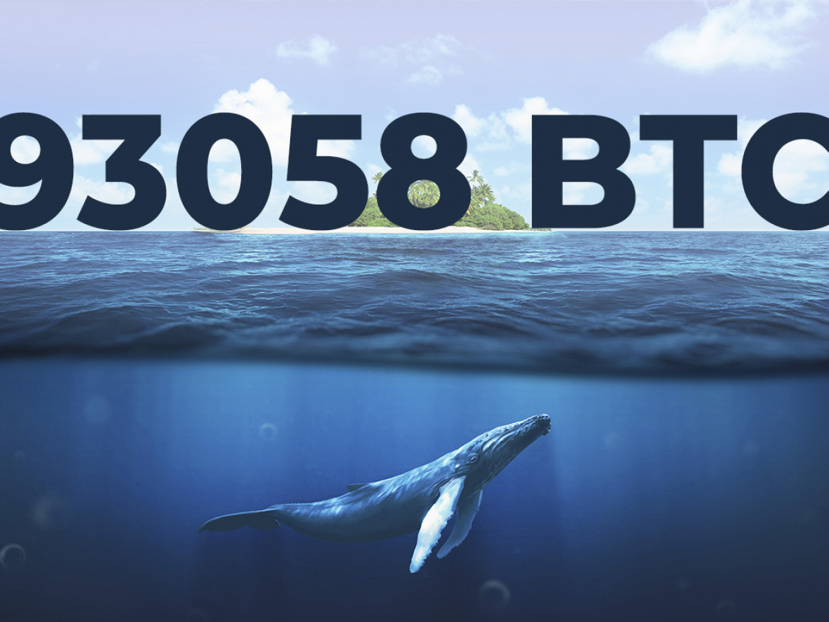 93,058 Bitcoin Transferred Over Past Hour By Coinbase and Anonymous Whales
