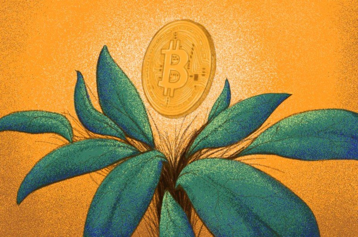 Genesis Digital Assets Raises $125 Million To Expand Bitcoin Mining Operations